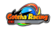 Gotcha Racing (3DS)
